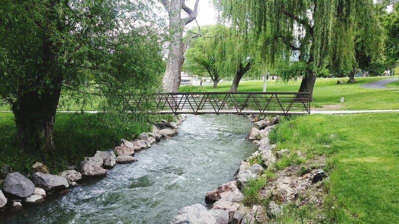 River at the park stock photos