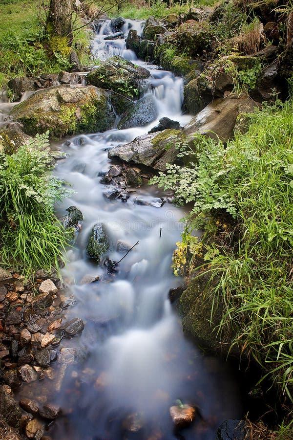 River royalty free stock photo