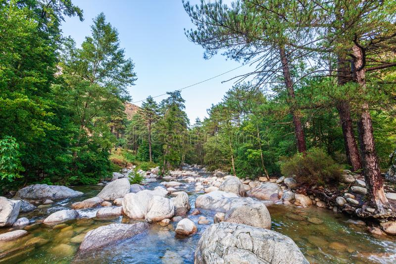 River with pebbles, mountains and picturesque forest. Enchanting and evocative landscape. stock photography