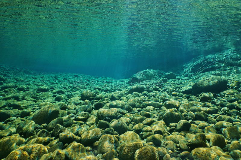River pebbles underwater riverbed clear water stock image