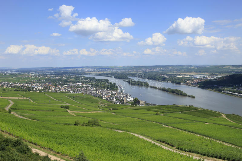 River Rhine at Rudesheim. River Rhine Valley Vineyards and Rhine cruise boats stock images