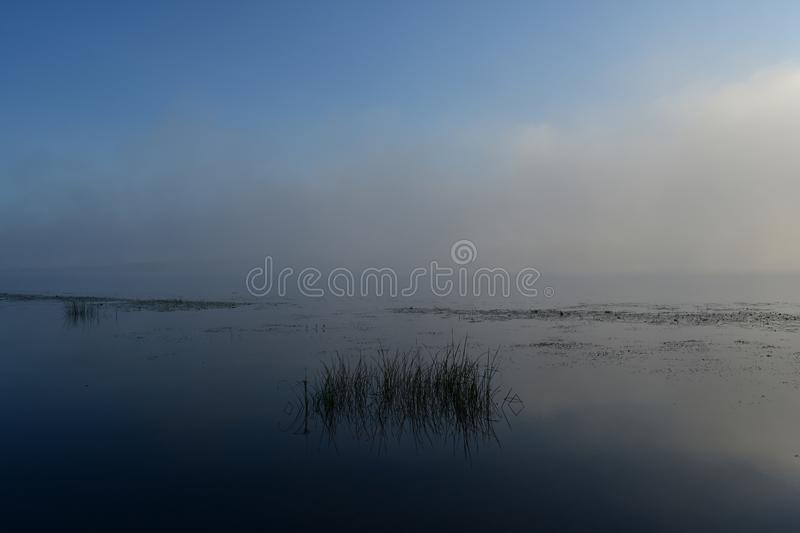 River rising sun illuminates all around with its gentle and warm. Rays royalty free stock images