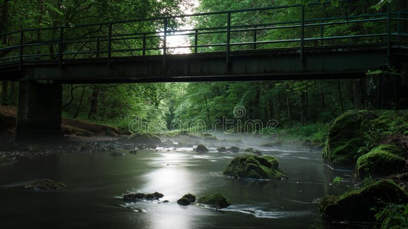 River With Rocks Under Bridge Surrounded by Green Leaf Trees during Daytime royalty free stock image