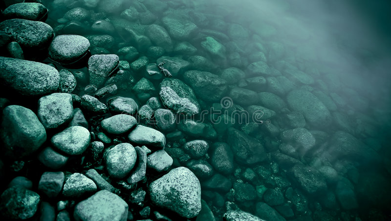 River's edge royalty free stock images