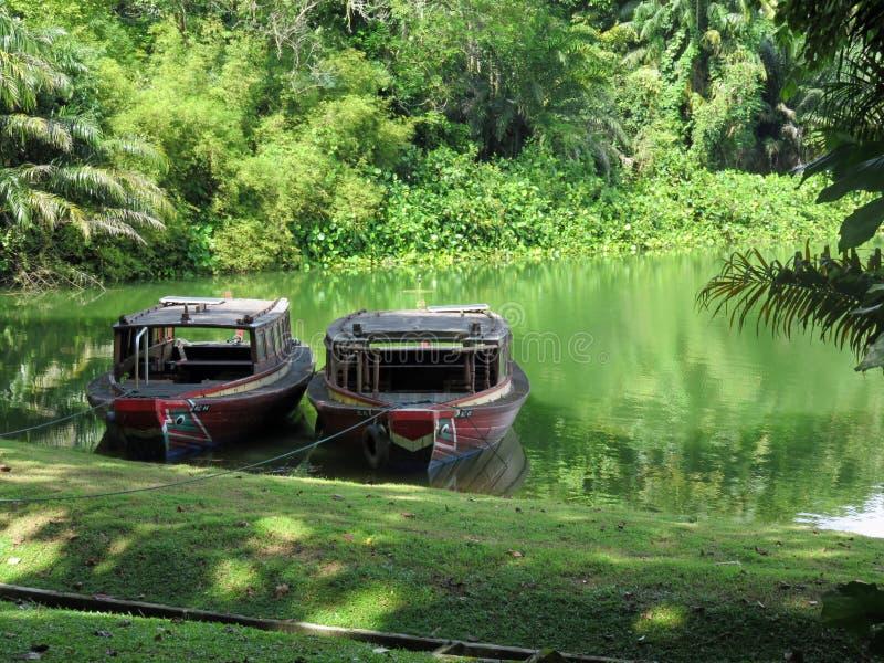 River Safari theme park in Singapore. Boats moored on a wild Amazonian lake in the River Safari theme park, November 14th 2014, Singapore royalty free stock photo