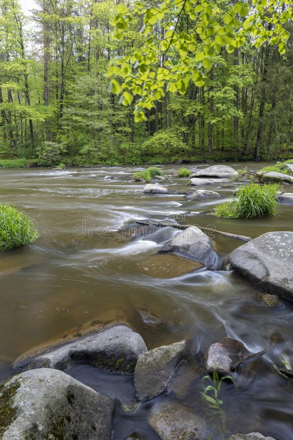 River Sazava near Smrcna, Czech Republic. Nature, water, forest, landscape, green, natural, tree, travel, stream, background, outdoor, view, scenery, stone royalty free stock images