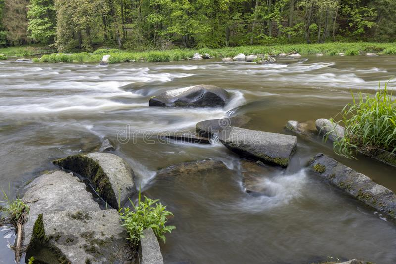 River Sazava near Smrcna, Czech Republic. Nature, water, forest, landscape, green, natural, tree, travel, stream, background, outdoor, view, scenery, stone stock photos