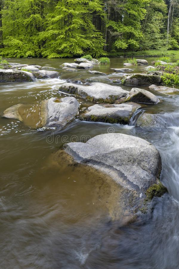 River Sazava near Smrcna, Czech Republic. Nature, water, forest, landscape, green, natural, tree, travel, stream, background, outdoor, view, scenery, stone royalty free stock image