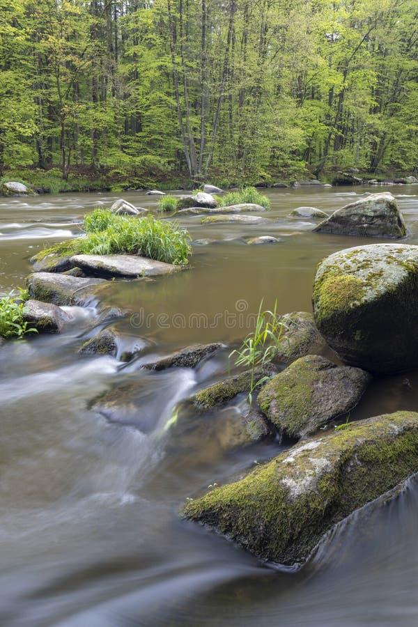 River Sazava near Smrcna, Czech Republic. Nature, water, forest, landscape, green, natural, tree, travel, stream, background, outdoor, view, scenery, stone stock photo