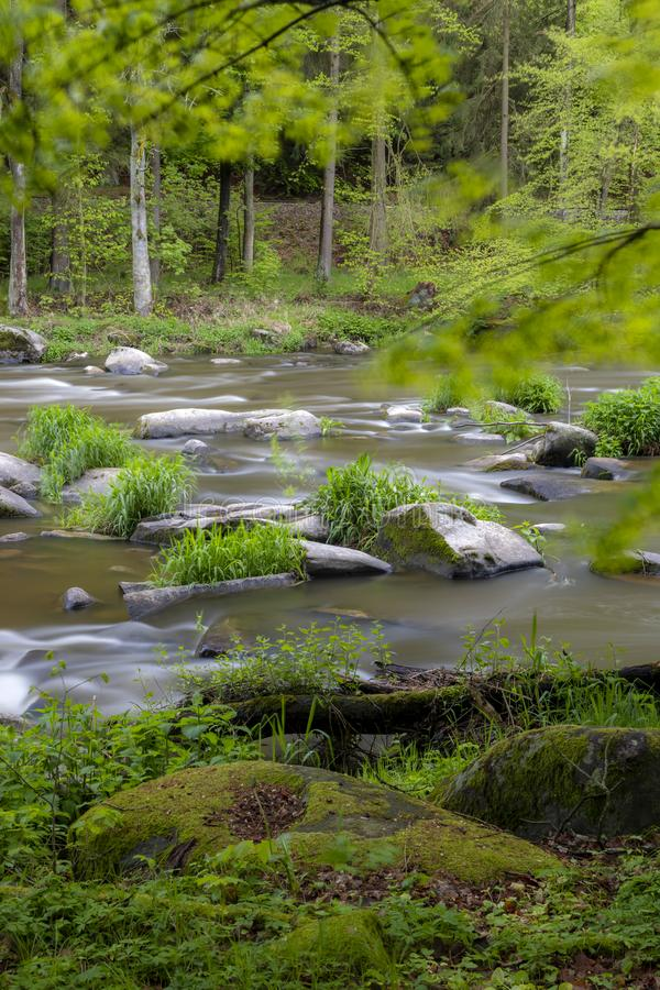 River Sazava near Smrcna, Czech Republic. Nature, water, forest, landscape, green, natural, tree, travel, stream, background, outdoor, view, scenery, stone royalty free stock photos