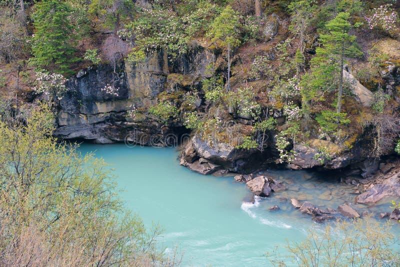 River scenery royalty free stock photo