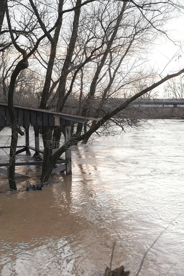 The river after the showers came out of the shores. The river after the downpours came out of the banks. Flooding of river bank, trees after flood stock image