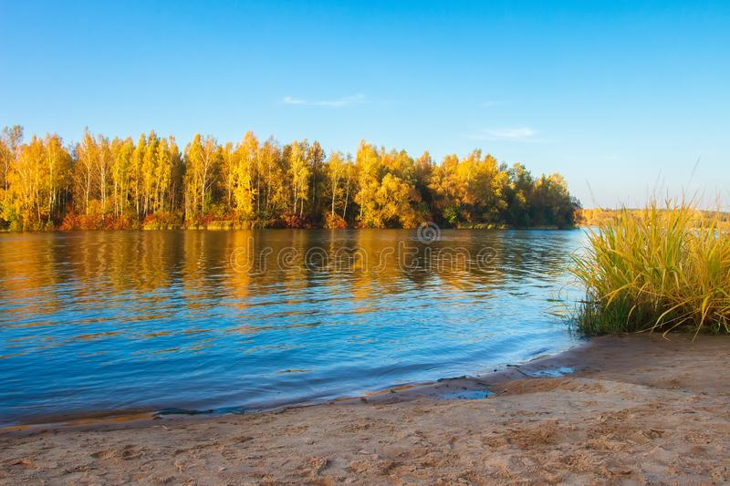 River side. Autumn nature landscape. Scenic riverside and yellow trees. Fall. River shore. Calm evening on river. River side. Autumn nature landscape. Scenic stock photo