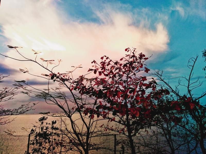River side. Cloud nature sky stock photos