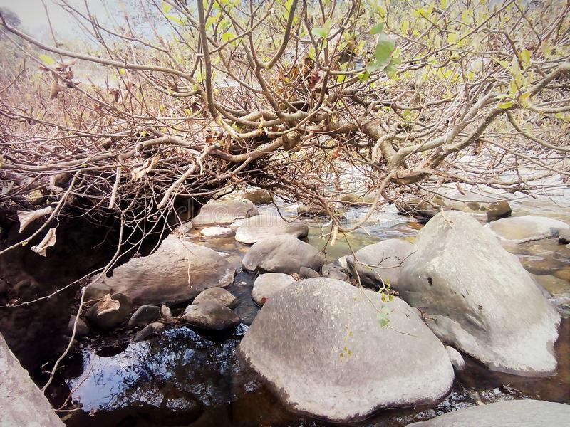 River Side. Near chorten cora Bhutan stock photography