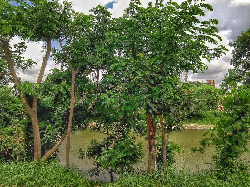 River side. Sideof, ariver, narayanganj, bangladesh, asia royalty free stock photos