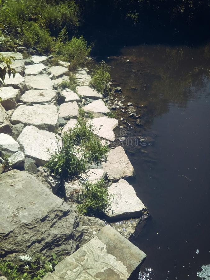 River side view. Sunny river side view at Toronto& x27;s High Park royalty free stock images