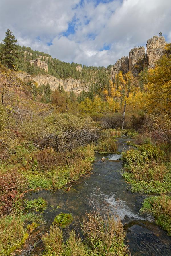River in Spearfish Canyon during the fall. Fall landscape in Spearfish Canyon, Black Hills, South Dakota royalty free stock photography