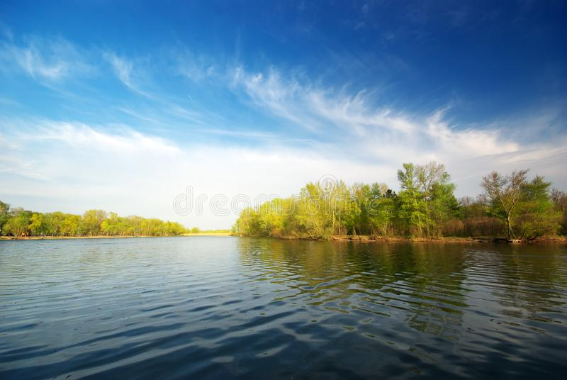 River and spring forest royalty free stock photography