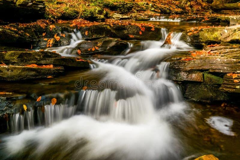 River falls. River stream in autumn stock photo
