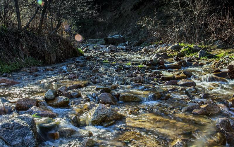 Spring waters. River stream in the mountains in spring stock images