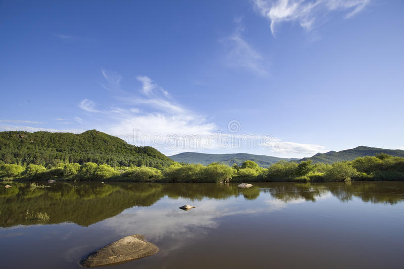 River in summer royalty free stock photo