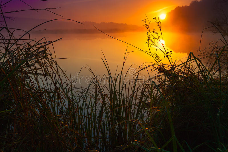 River at sunrise. Mist over the river at sunrise royalty free stock photo