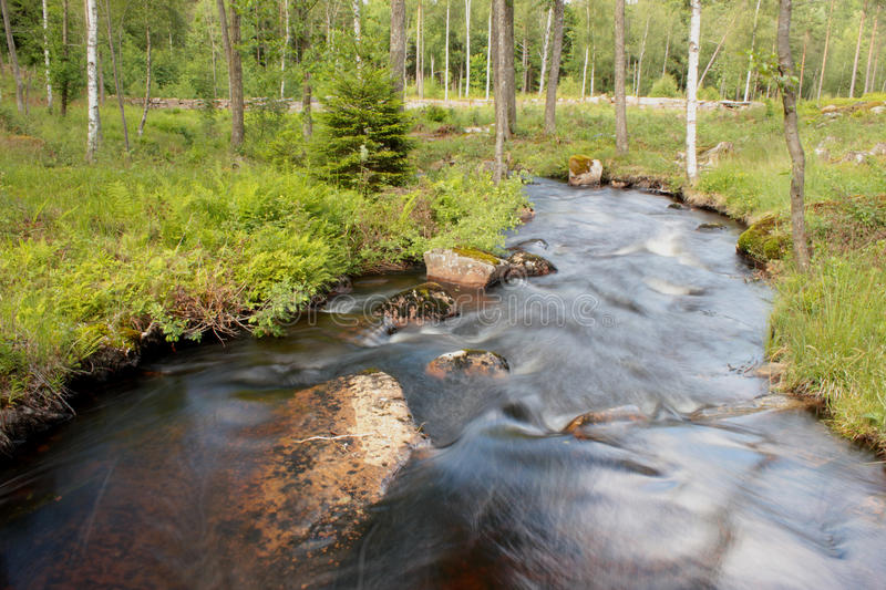A river in the Swedish woods royalty free stock photography