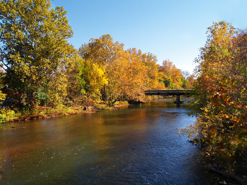 River and trees in autumn stock images