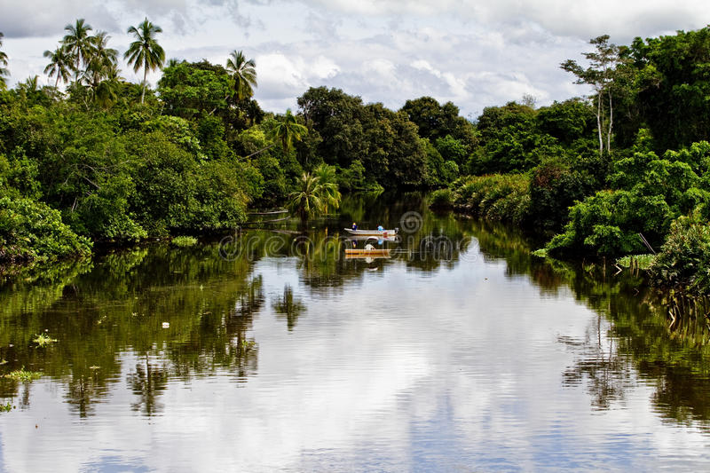 Download River in tropical jungle stock image. Image of boat, remote - 12568129