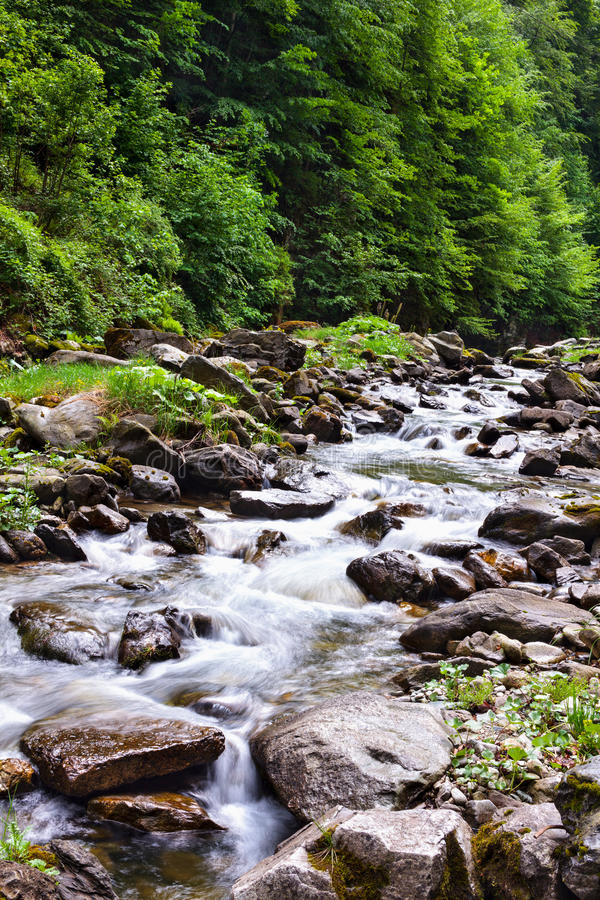 Download River valley stock photo. Image of river, environment - 25092372