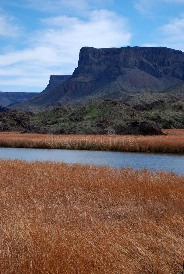 River valley in Arizona royalty free stock photography