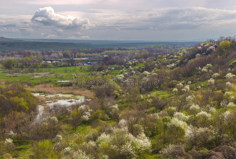 River Valley en la primavera fotografía de archivo libre de regalías
