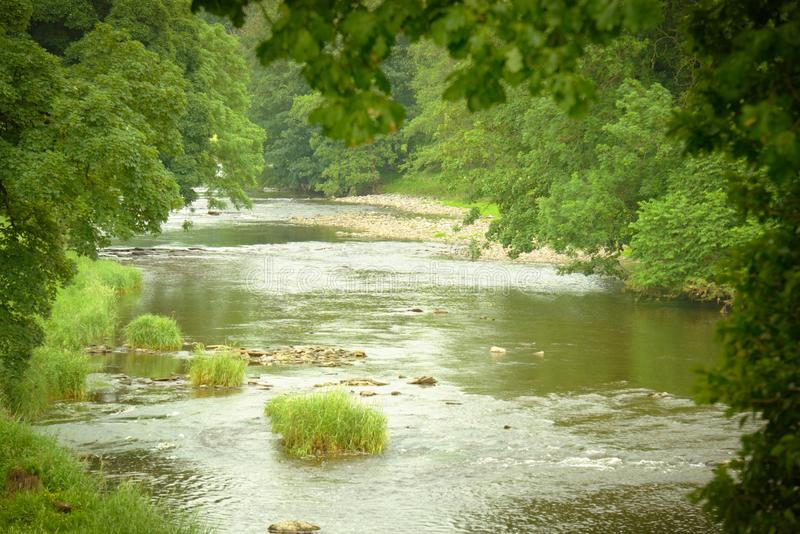 River Ribble through the tree's. View along the river Ribble in Lancashire UK with tree's overhanging the water stock photo