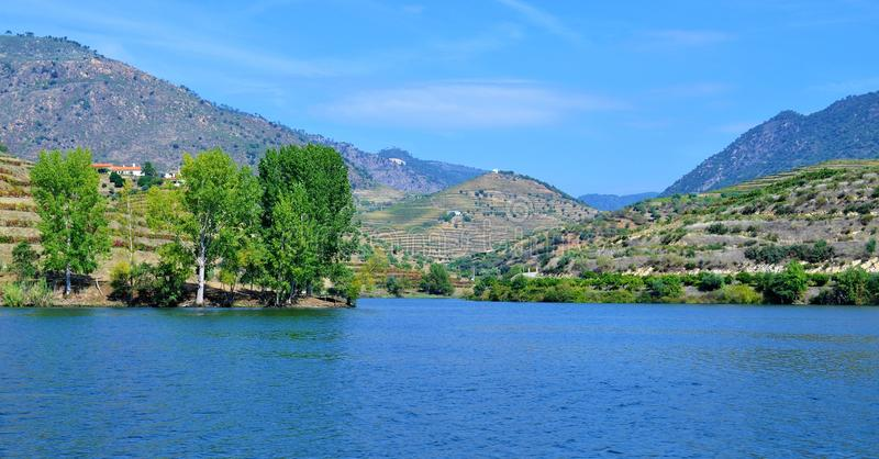 The river, the vineyards, the terraces and the blue sky - Douro river stock photo