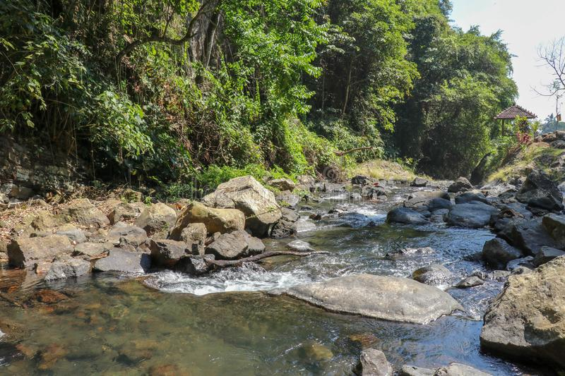 River Water Stream in Rain Forest. Rapid Water Stream Landscape with Rock and Green Forest on Riverside. Rushing River stock photography
