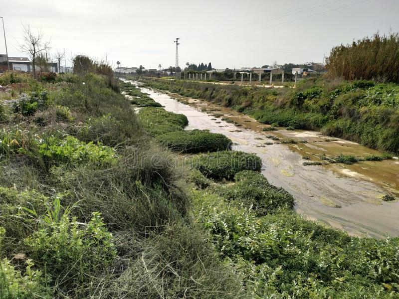 River with water and vegetation in Rociana del Condado Spain. River with water and vegetation in Rociana del Condado province of Huelva, Spain royalty free stock photography