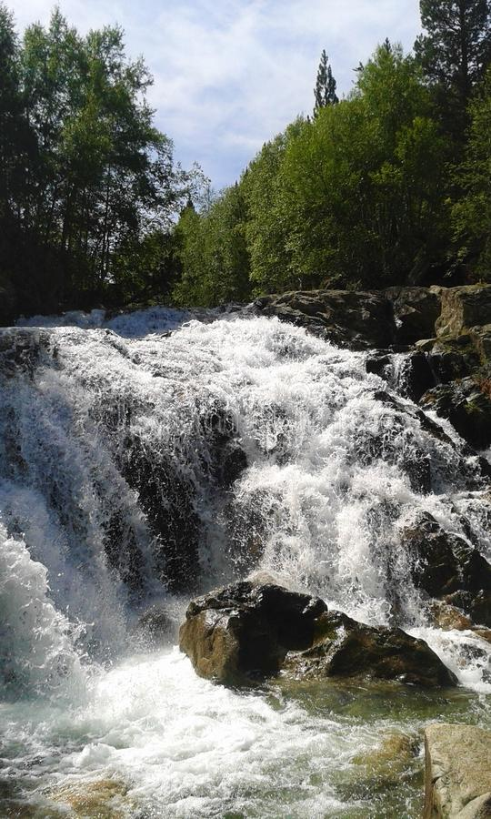 River with a waterfall in the middle of the forest stock photography