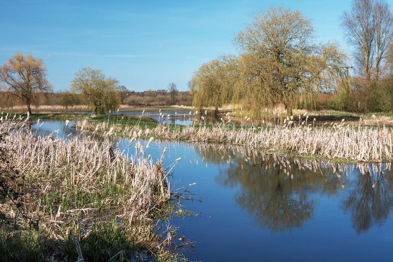 The River Wensum in Spring. Landscape view of the Wensum Valley. Mid Norfolk UK. A tributary of the River Wensum follows the lane to the Water Mill royalty free stock photos