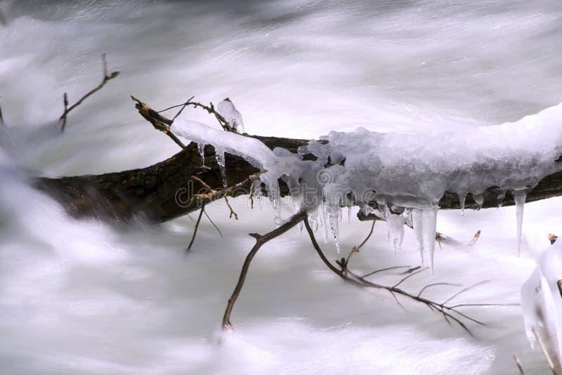 river wiosna fotografia stock