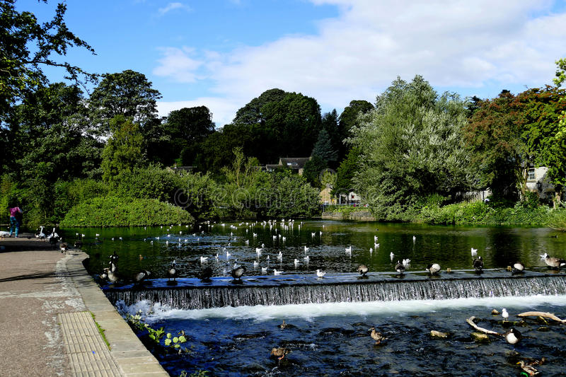 River Wye, Bakewell. royalty free stock photos