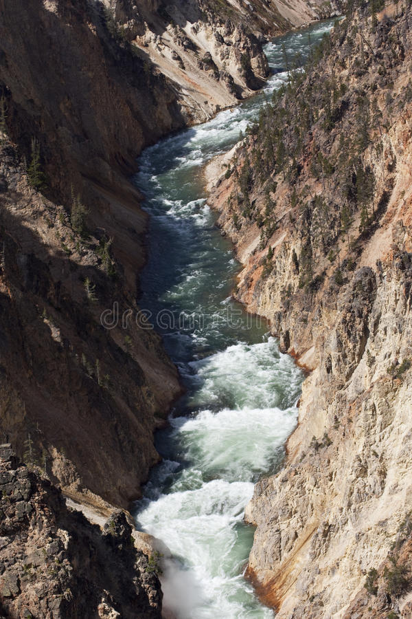 River in Yellowstone National Park stock image