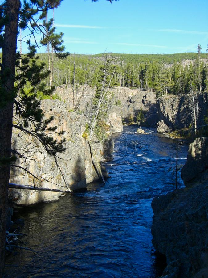 a river in the yellowstone park royalty free stock photo