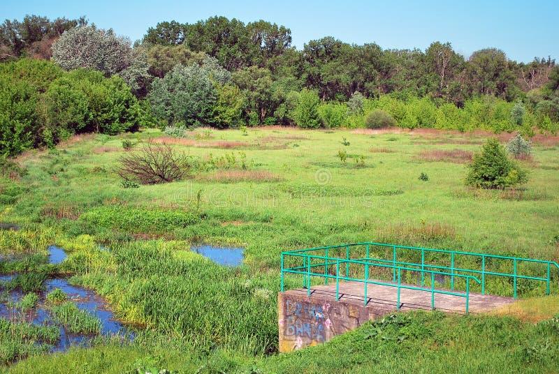 riverbank стоковое изображение