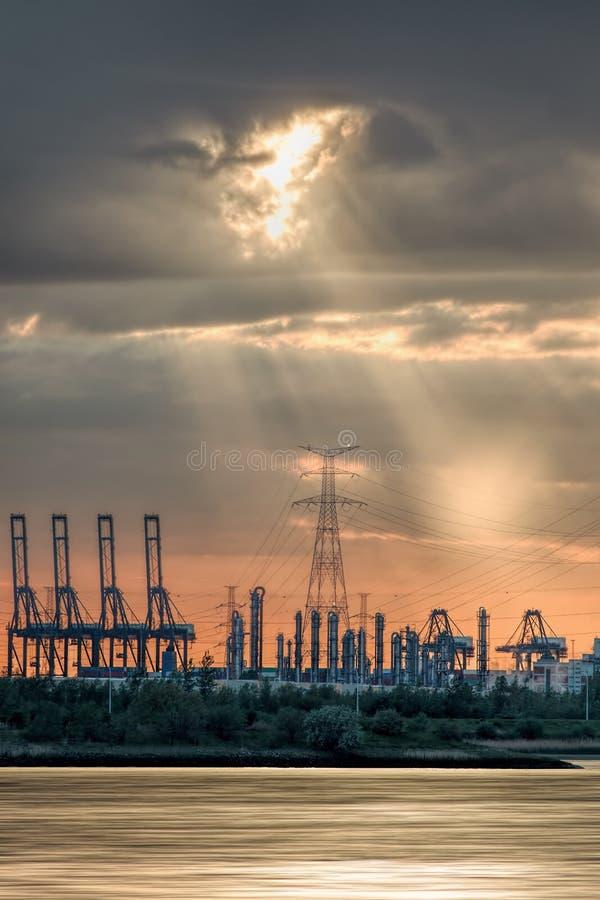 Riverbank con las siluetas de las gr?as durante una puesta del sol, puerto de la terminal de contenedores de Amberes, B?lgica fotos de archivo libres de regalías