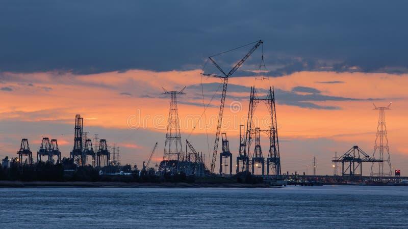 Riverbank con las siluetas de las gr?as durante una puesta del sol, puerto de la terminal de contenedores de Amberes, B?lgica imagen de archivo