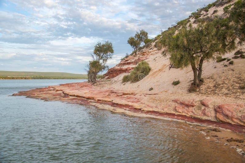 Riverbank de Kalbarri: Río de Murchison foto de archivo libre de regalías