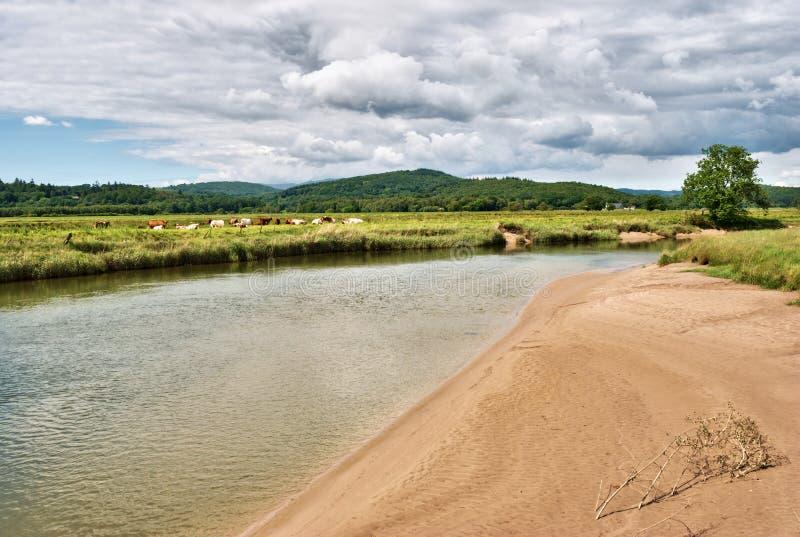 Riverbank de marea en el río Leven fotografía de archivo libre de regalías