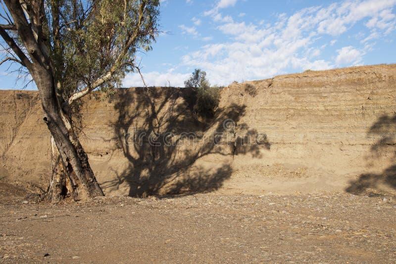 Riverbank expuesto que muestra las capas de arena depositadas a lo largo de la historia imagen de archivo libre de regalías