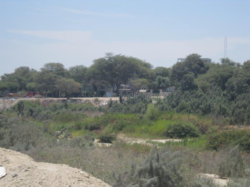 Riverbank krajobraz zdjęcia royalty free